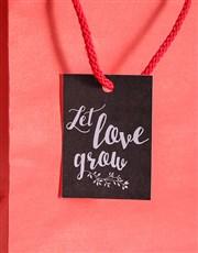 Let Love Grow Bonsai Kit