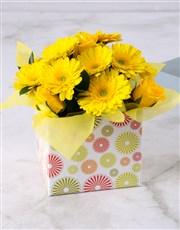 Yellow Gerbera & Rose Circle Box