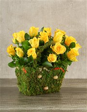 Yellow roses in a gorgeous moss covered basket. A