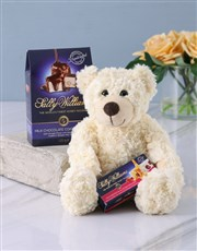 A gift box containing a cuddly teddy, a variety of