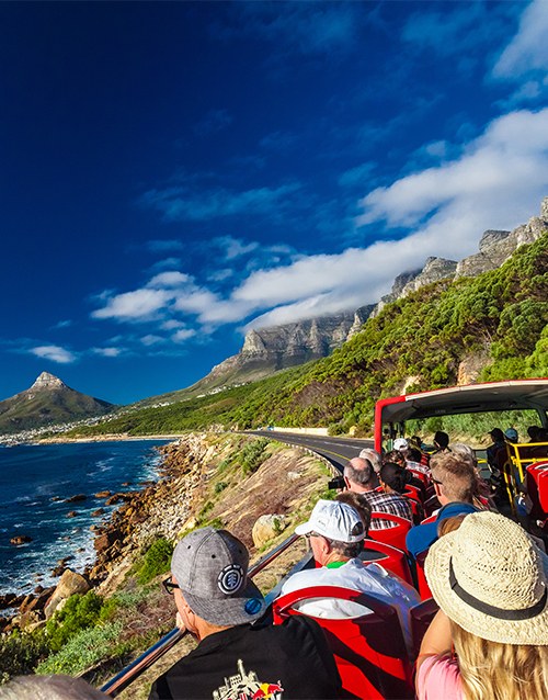 birthday: Bus Tour in Cape Town!