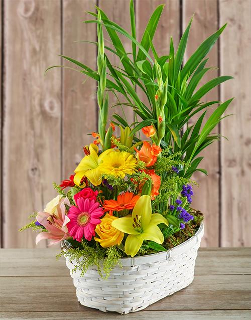 secretarys-day: Plant with Flower Arrangement in a Basket!