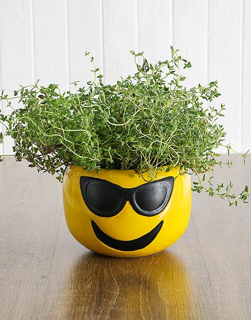 herbs: Herbs in Sunglasses Emoji Pot!