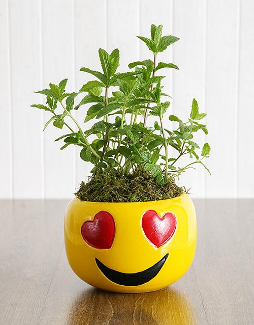 herbs: Herbs in Heart Eyes Emoji Pot!