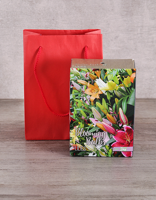 prices: Lily Bulbs in Red Bag!
