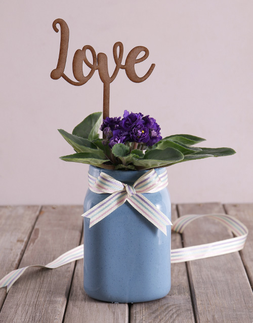 flowering: African Violet with Wooden Love Cutout!
