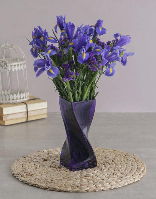 colour: Blue Irises in a Purple Twisted Vase!