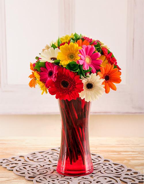 gerbera-daisies: Mixed Gerberas in a Red Vase!