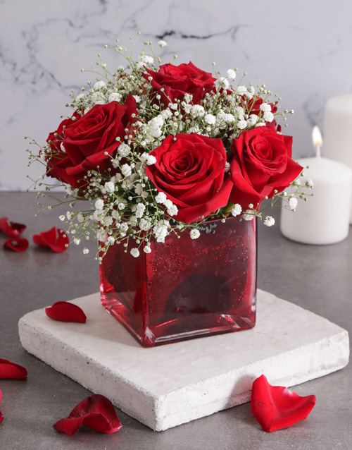 coloured-vases: Red Roses and Million Star in Vase!
