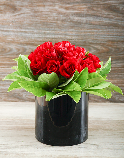 coloured-vases: Enchanted Red Roses!