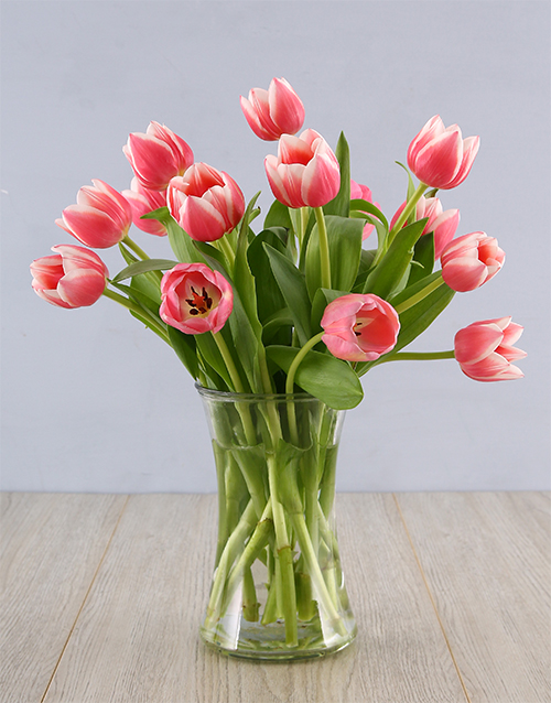 tulips: Pink Tulips in a Clear Vase!