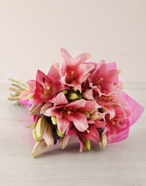 lilies: Pink Asiflorum Lily Bouquet!