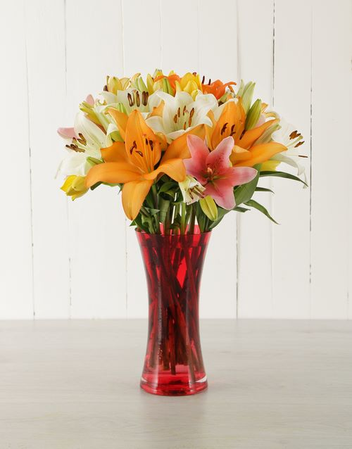 vase: Red Vase of Mixed Asiflorum Lilies!