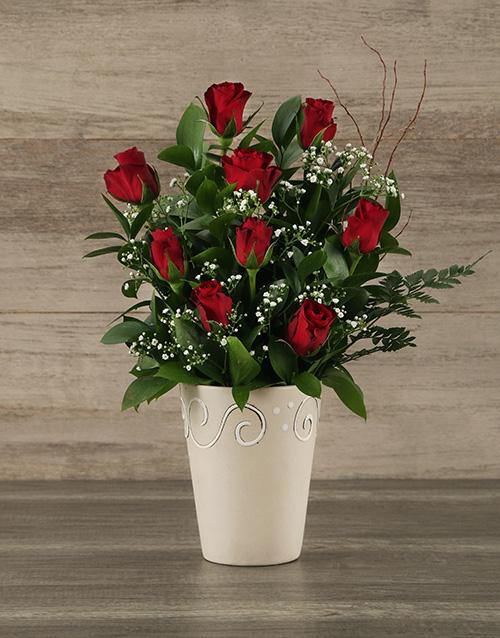 roses: Red Rose Pot!