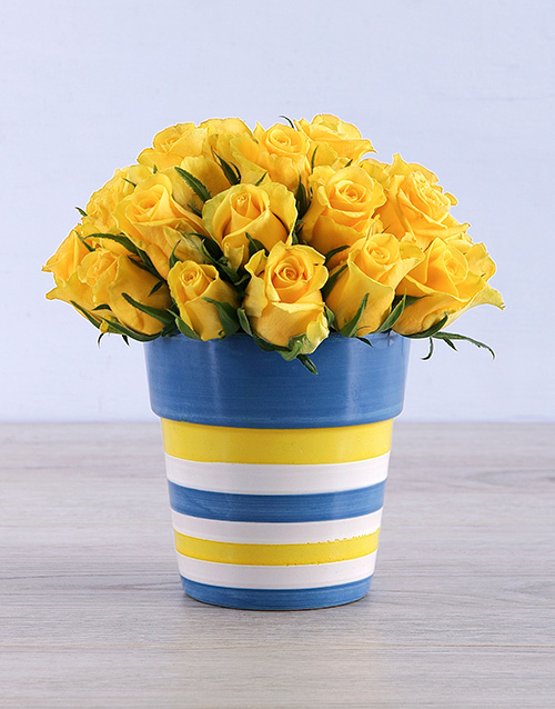 colour: Yellow Roses in Round Stripy Vase!