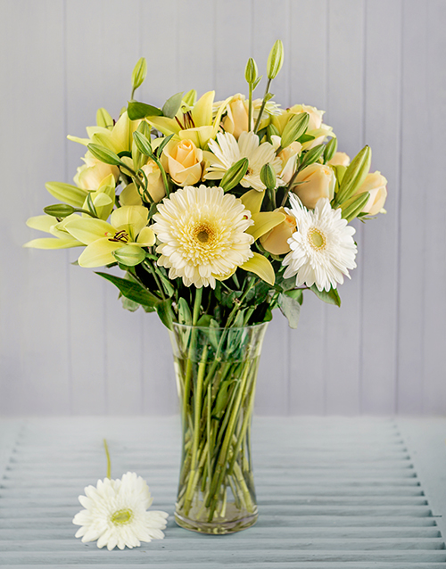 gerbera-daisies: Cream and White Flowers in a Vase!