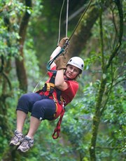 Picture of Canopy Tours   KZN!