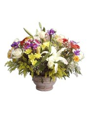 Picture of Colourful Abundance!