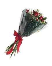 Picture of Classic Dozen Roses in Cellophane!