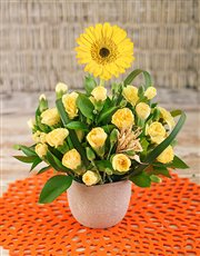 Picture of Gerbera Among Mini Carnations in Petite Vase!
