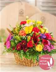 Picture of Basket of Bright Country Flowers!
