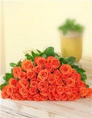 Picture of Orange Roses In cello!