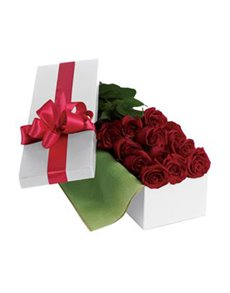 flowers: Roses For You!