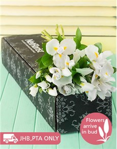 flowers: White Irises in a Gift Box!