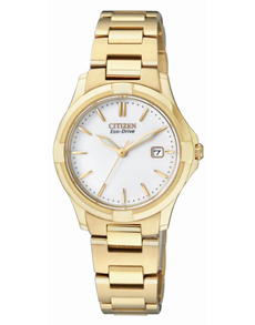 gifts: Citizen Ladies eco drive yellow gold watch!
