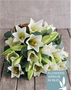 gifts: Fragrant Lily Bouquet!