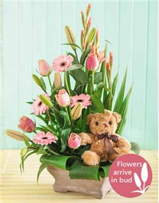 flowers: New Baby Girl Flower Arrangement!