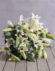 gifts: Lovely Lilies!