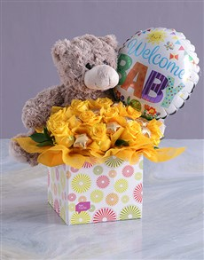 flowers: Welcome Baby Edible Arrangement!