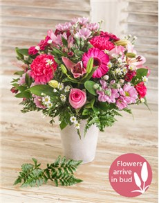 flowers: Pastel Pink and Lavender Flowers!