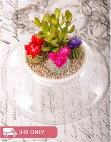 flowers: Flowering Cacti Vase!