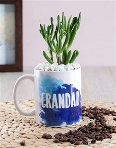 flowers: Grandad Succulent Mug Gift!