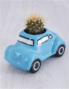 flowers: Succulent in Ceramic Beetle!