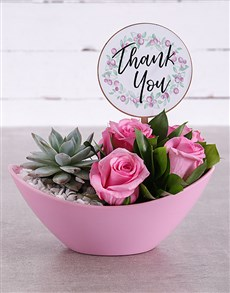 gifts: Thank You Succulent and Rose Arrangement!