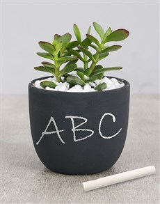 flowers: Succulent Chalk Pot!