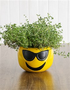 plants: Herbs in Sunglasses Emoji Pot!