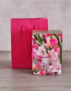 gifts: Gladiolus Bulbs in Cerise Bag!