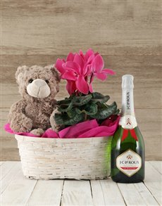 gifts: Cerise Cyclamen Spoils Basket!