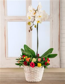flowers: A Beautiful Spring Basket!