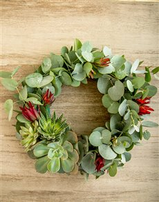 plants: Lucky Pony Simply South African Wreath!
