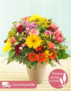 gifts: Seasonal Flowers in Ceramic Vase!