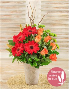 flowers: Lily Gerbera and Rose Floral Display!