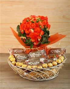 flowers: Temptation!