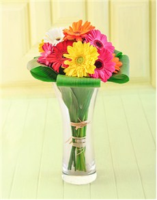 flowers: Gerberas in a Vase!