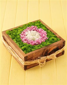flowers: Sprays in a Wooden Box!