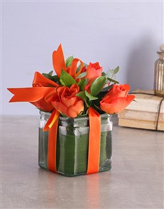 flowers: Orange Roses in a Square Vase!